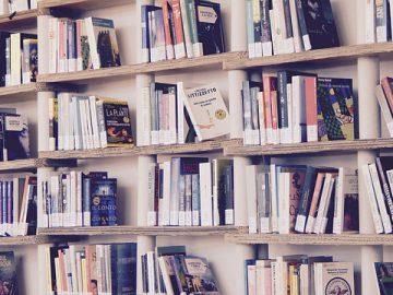 Biblioteka, księgarnia, antykwariat